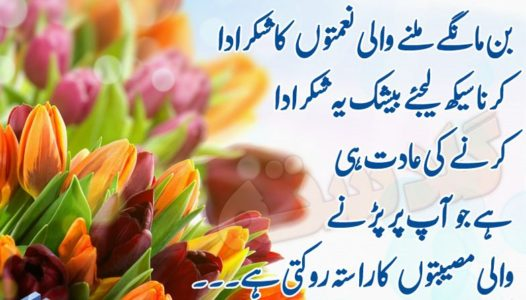 Superb Quotations for the Students in Urdu & English | The
