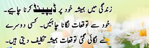 Superb Quotations For The Students In Urdu English The College Study