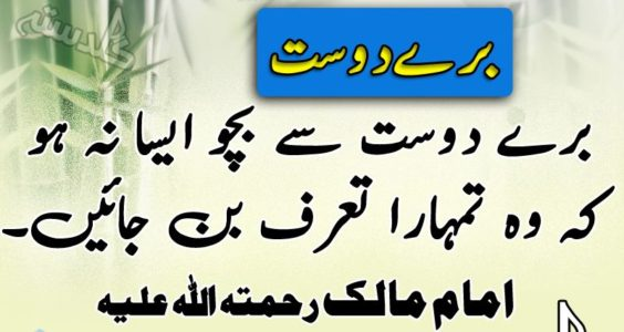 Inspirational Quotes Wallpapers In Urdu English The College Study