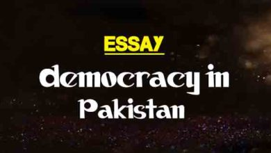 essay on science and war  words  the college study short and long essay on democracy in pakistan