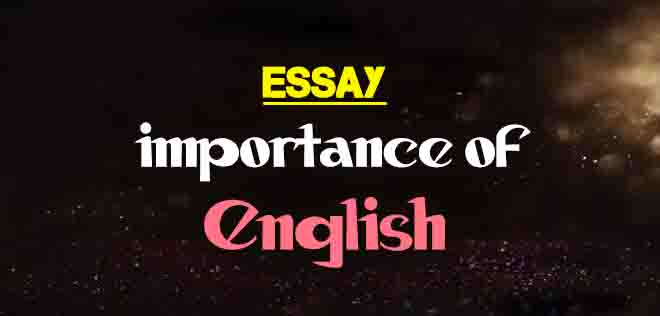 Importance Of English Essay With Quotation  The College Study Importance Of English