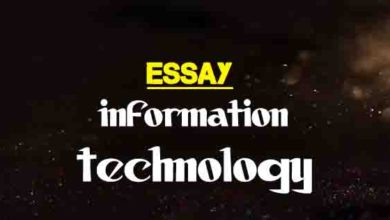 Essay On The Role Of The Press  The College Study Brief Essay On Information Technology It Argument Essay Topics For High School also Essay About English Language  Good English Essays Examples