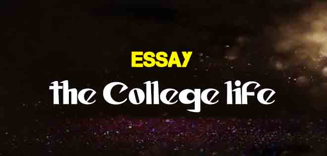 The College Life Short And Long Essay  The College Study