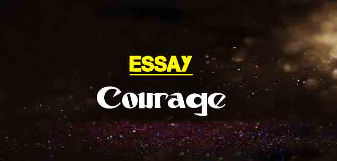 Short Essay On Courage For Students  The College Study