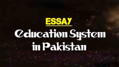 Essay On The Importance Of Commercial Education  The College Study Essay On Education System In Pakistan