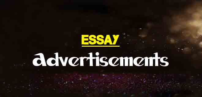 Essay On Advertisements For Students  The College Study