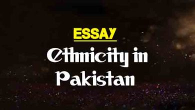 5 Paragraph Essay Topics For High School Short Essay On Ethnicity In Pakistan Essays About Health Care also Easy Persuasive Essay Topics For High School Short Essay On A Sad Day In My Life  The College Study Healthy Diet Essay