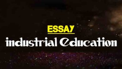 How To Write An Essay Proposal Short Essay On Industrial Education Science And Technology Essay also Essay Topics For Research Paper Importance Of Technical Education Essay  The College Study Best English Essay Topics