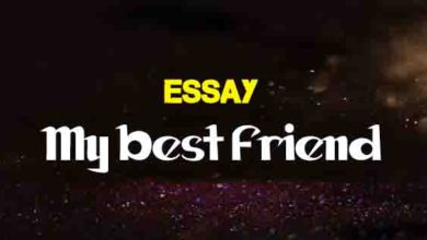 Short Essay On A Pleasant Dream  The College Study Short Essay On My Best Friend