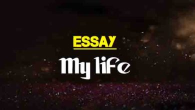 What Is Thesis In An Essay Short Essay About My Life  Words Essay On Cow In English also Thesis Statement Analytical Essay Essay On Life Of The Policeman  Words  The College Study Essay On Photosynthesis