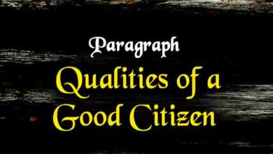 how to be a good citizen paragraph