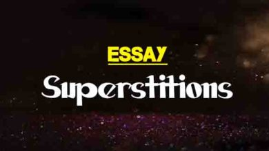 Compare And Contrast Essay High School Vs College Holi Festival Essay In Hindi Short Essay On Some Popular Superstitions  Topics For An Illustration Essay Also Essay American Dream Essay On If I  Were The  Persuasive Essay Sample Paper also Essays On Business Ethics World Peace Essays Technology Essay Sample Also A G Gardiner Essays  Topic English Essay