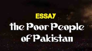 Role Of Electronic Media Short Essay  The College Study The Poor People Of Pakistan  Words Essay Help With Statistical Analysis also Thesis Support Essay  Business Plan Writer Reviews