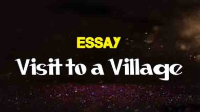 Essay On Pakistani Patriotism For Fsc Nd Year  The College Study Essay On A Visit To A Village For Students Writer Wanted also Proposal Service  Research Websites For College Students